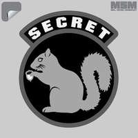 MSM SECRET SQUIRREL DECAL